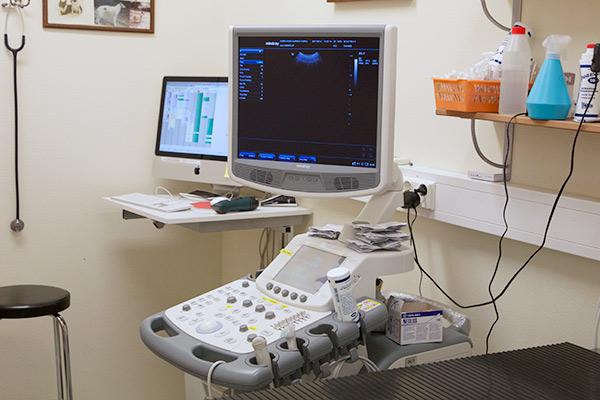 Ultraäänitutkimuslaite,jolla myös tehdäändopplersydäntutkimuksia.