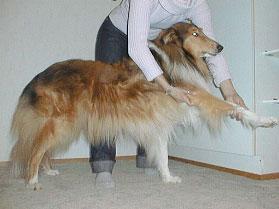 Ote: Jalka ojennetaan suoraksi, toinen käsi tukee kyynärän takaa.