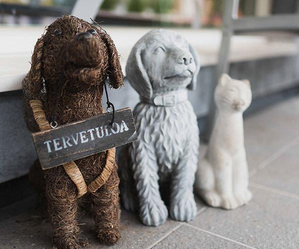 Koira-Kissaklinikka yritys- ja yhteystiedot